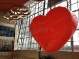 Valentine Fever